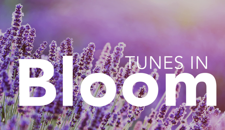 April 2018 - Tunes In Bloom