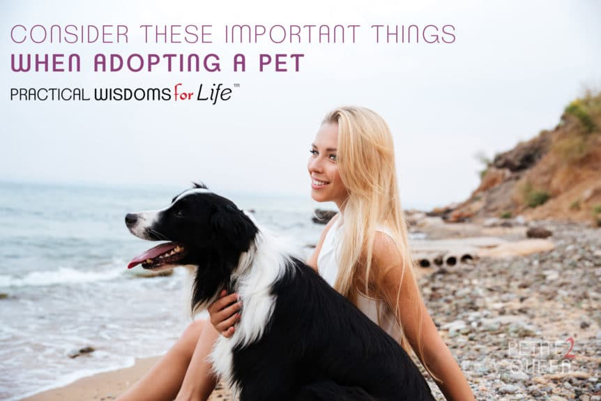Consider These Important Things When Adopting a New Pet